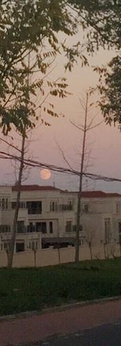 13,Dawn.jpg
