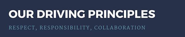 driving principles.png