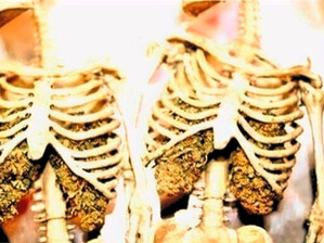 Les effets du cannabis sur les poumons