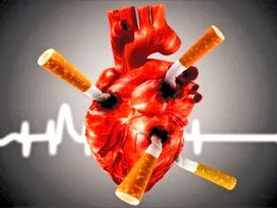 BPCO, coeur et poumons