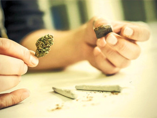 Cannabis, marijuana, haschisch et système respiratoire