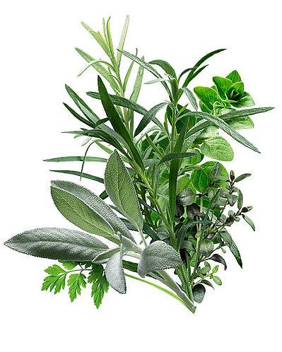Herbes de Provence Oil