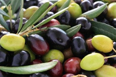 Koreniki Extra Virgin Olive Oil