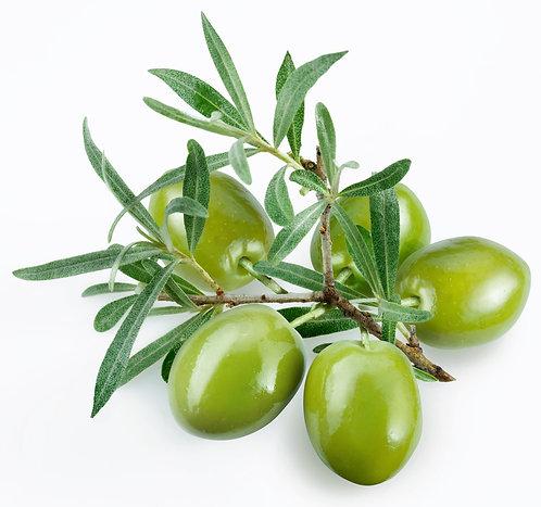 Melgarejo Picual Extra Virgin Olive Oil EVOO