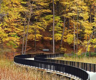 Durand Eastman Park-Wetland Trail