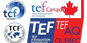 buy tef certificate without exam.png