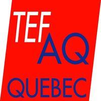 Buy TEF Certificate Online