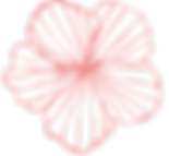 112_03_S_1pink.png