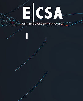 ECSA Background copy.jpg