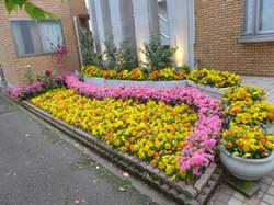 医院前花壇