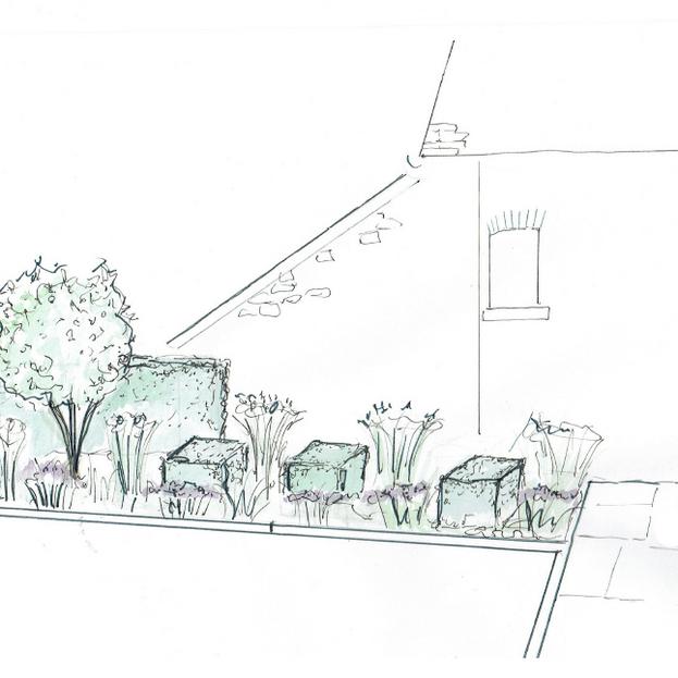 Cullompton Garden