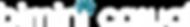 blog_F_Bimini Logo H Text white.png