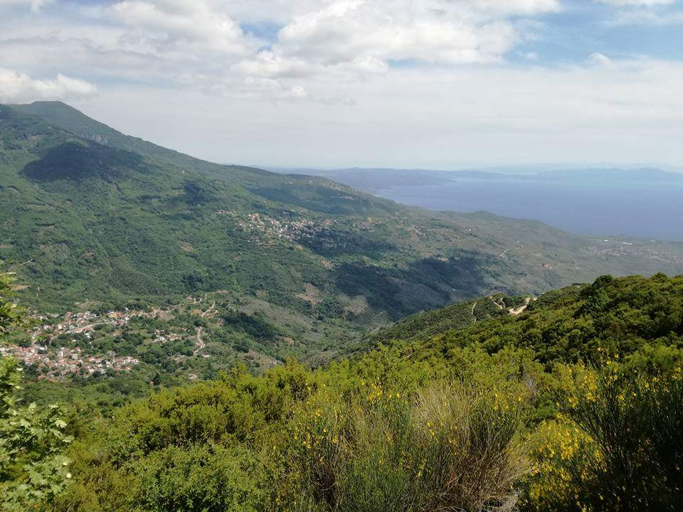 North east Pelion