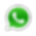 IconWhatsapp.png