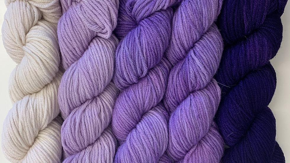 Araucania Molina - Pack of 5 Purple Fades