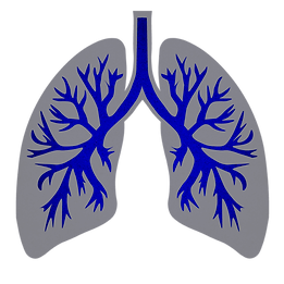 LUNG IMAGE - Copy.png