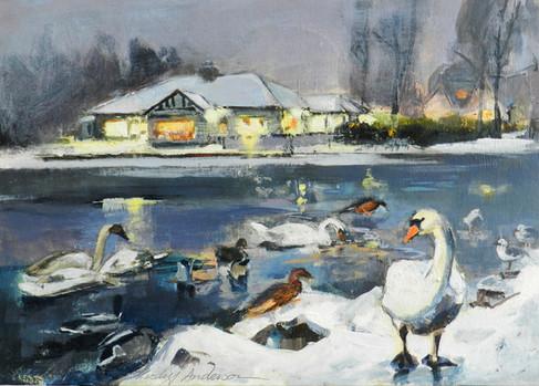 Winter, Rouken Glen Park