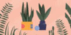 plant-index_v01.png