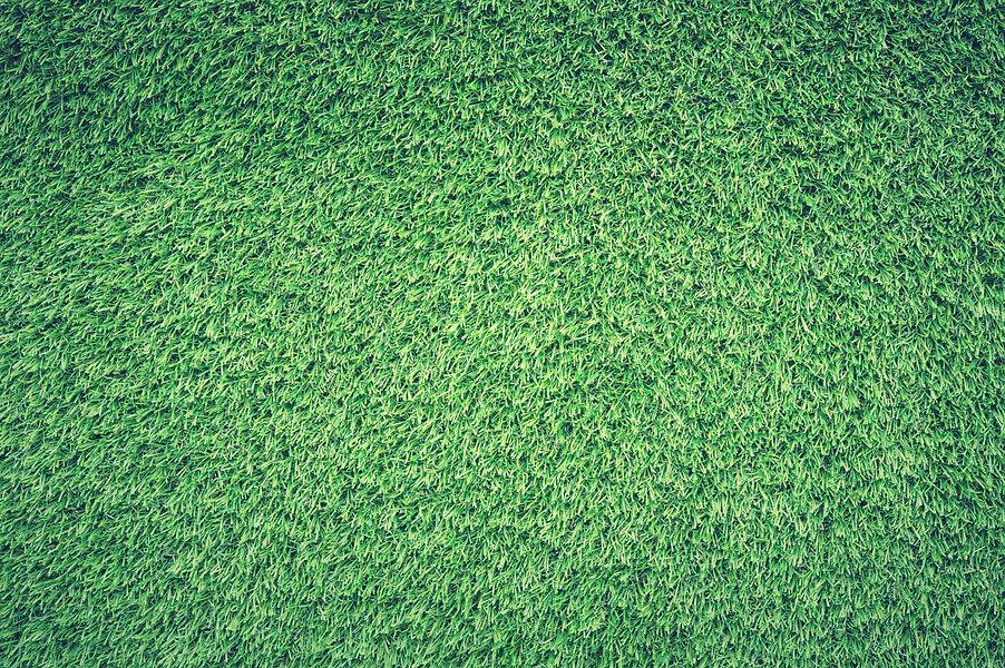 green-grass-lawn-139315.jpg