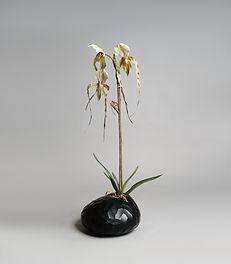 Flowers  (3 of 42).jpg
