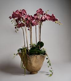 Flowers -33.jpg