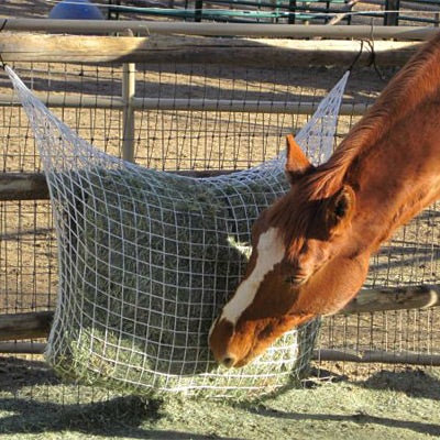 """Freedom Feeder Extended Day Slow Feed Hay Net (1"""" Mesh)"""