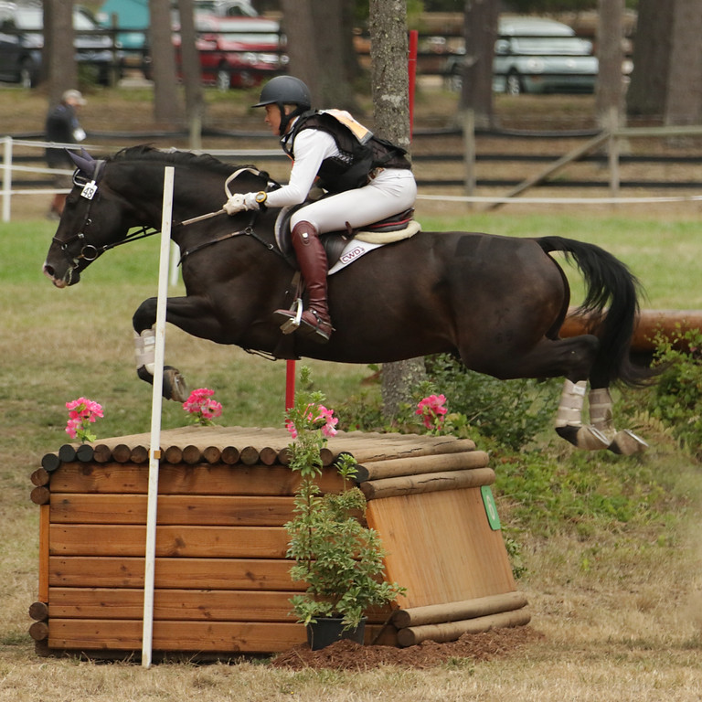 Karen O'Neal Eventing Clinic @ WSHP May 7-9th, 2021