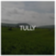 Tully New York