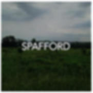 Spafford New York