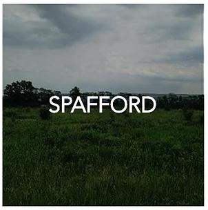 Spafford NY