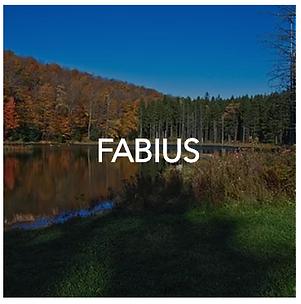 Fabius New Yok