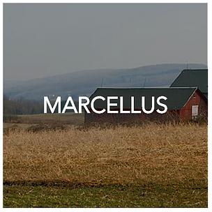Marcellus New York