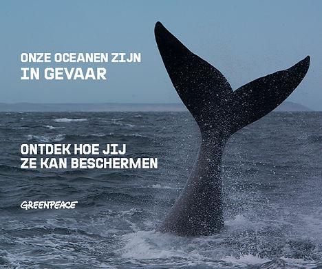 3 greenpeace-3.jpg