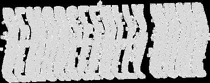RN Trash Logo White_edited.png