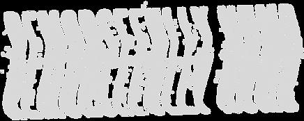 RN Trash Logo White.png