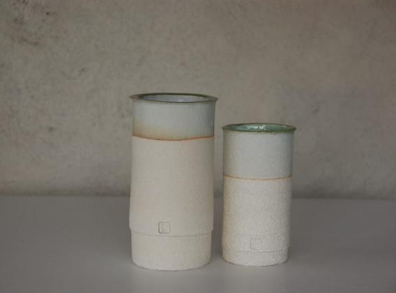 Bambous_celadon-