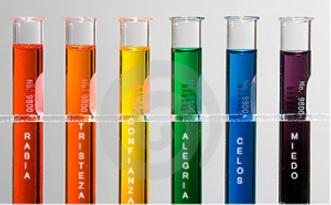 La quimica de las emociones