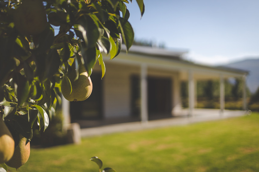 Orchards on your doorstep