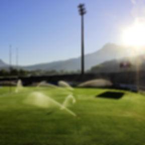 field-1255326_1920.jpg