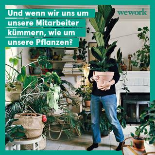 final plantsArtboard 1.jpg