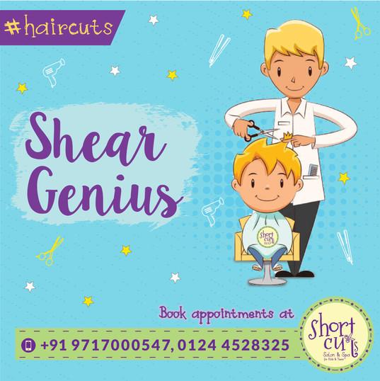 shear genius-01.jpg