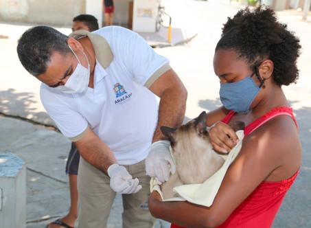 Pets Vacinados