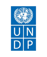 UNDP_edited.png