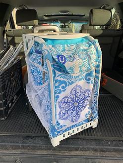 Zucca Skating Bag