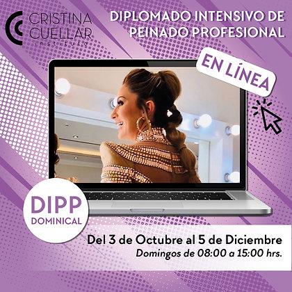 Diplomado de Peinado online Dominical