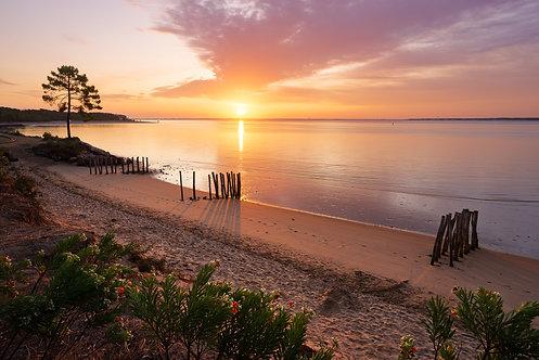 Lever de soleil à Gatseau, île d'Oléron - Tableau