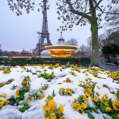 Let it snow  Retrouvez cette photo sur le SHOP :