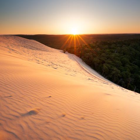 Premières lueurs sur la dune du Pilat  Retrouvez cette photo dans le SHOP :