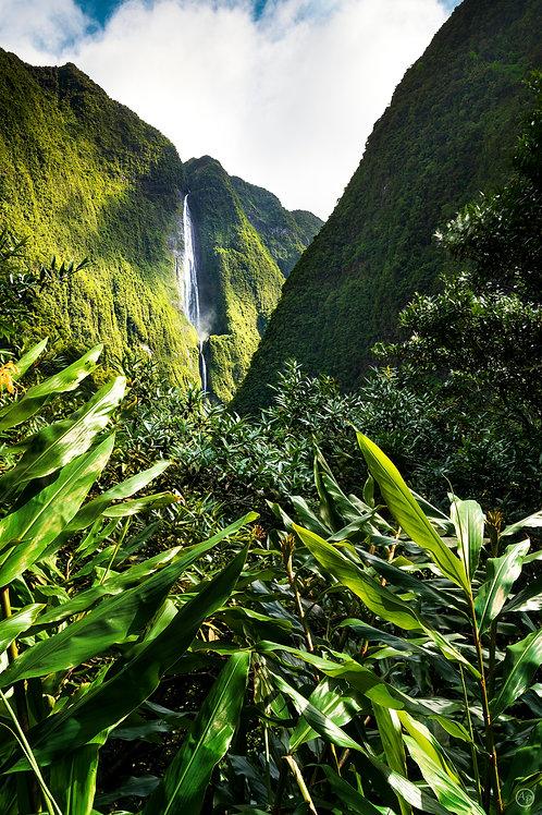 Cascade blanche, Salazie, île de La Réunion