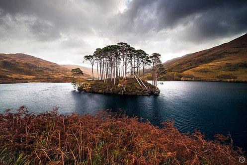 Loch Eilt, Scotland - Tableau